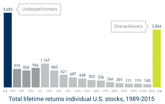 total lifetime return index